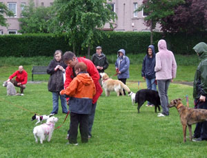 Dogs and owners in the summer rain that fell on the Dalmeny Park Dog Show