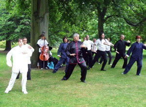 Tai chi specialist dressed in white and black move in formation, under a tree